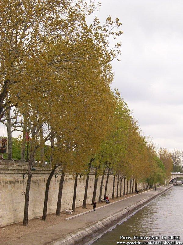 PARIS1169.jpg