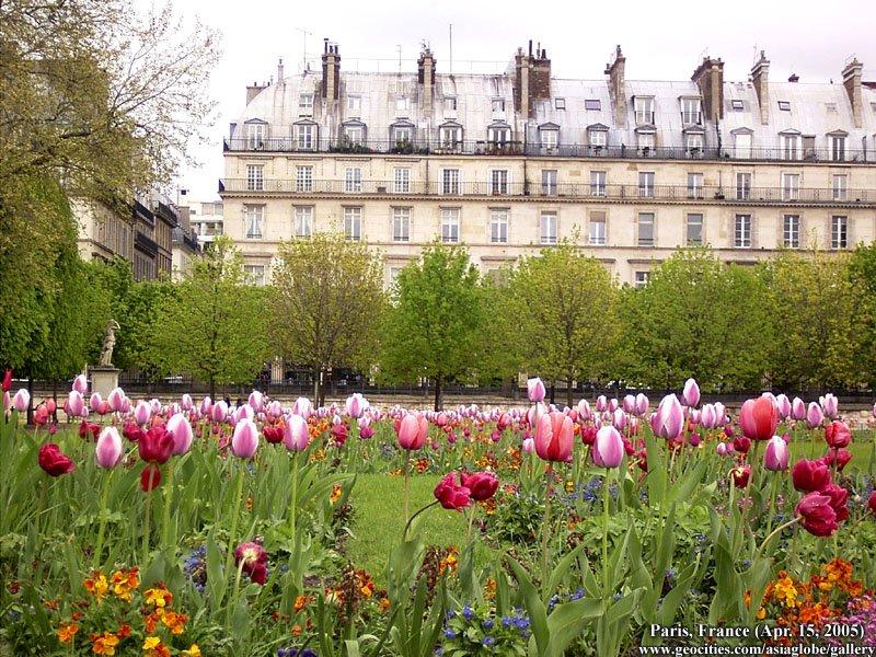 PARIS1172.jpg
