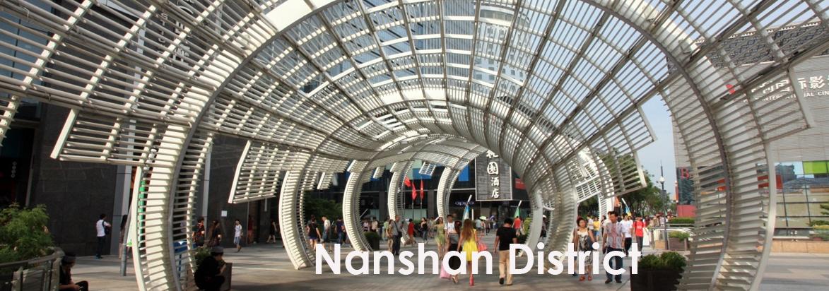 Nanshan District
