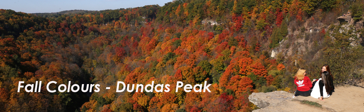 Fall Colours - Spencer Gorge / Dundas Peak