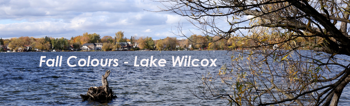 Fall Colours - Lake Wilcox